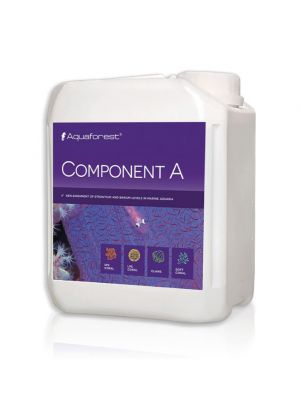 Component A 2000 ml